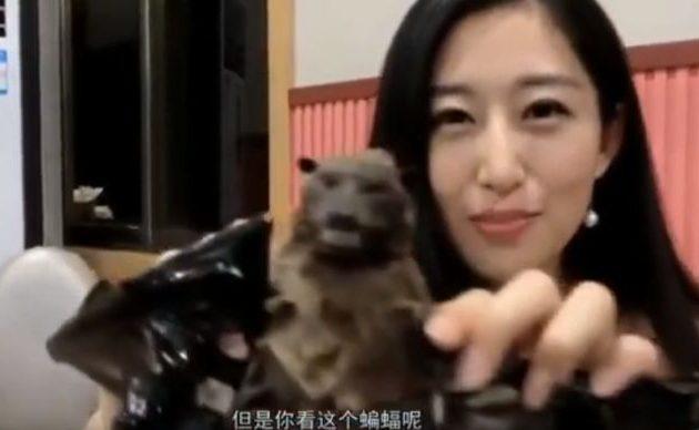 Κοροναϊός: Όμορφες Κινέζες μας δείχνουν πώς τρώνε τη νυχτερίδα (βίντεο)