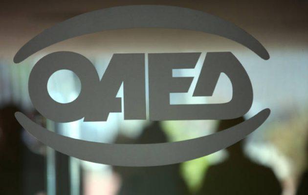 ΟΑΕΔ: «Έκλεισαν» οι προκηρυχθείσες θέσεις σε δύο προγράμματα