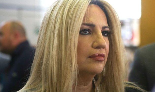 Φώφη Γεννηματά: «Η Κυβέρνηση πρώτα βλέπει τον συνωστισμό και μετά αντιδρά»