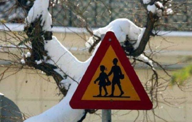 Πού θα είναι κλειστά τα σχολεία την Παρασκευή λόγω της κακοκαιρίας