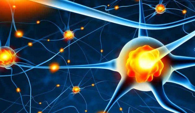 Αμερικανοί ερευνητές κατάφεραν να αναζωογονήσουν ανθρώπινα γερασμένα κύτταρα
