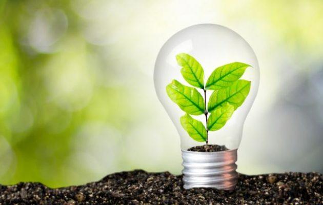 Ισραηλινοί επιστήμονες πέτυχαν την παραγωγή ηλεκτρικής ενέργειας από φυτά