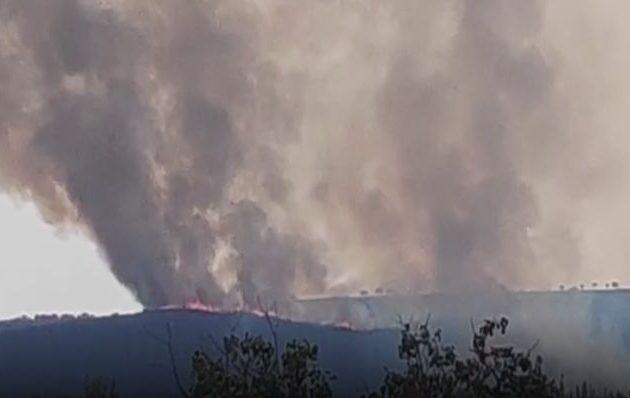 Μεγάλη φωτιά στην περιοχή Λυκάλωνα Κάντιας του Δήμου Ναυπλιέων