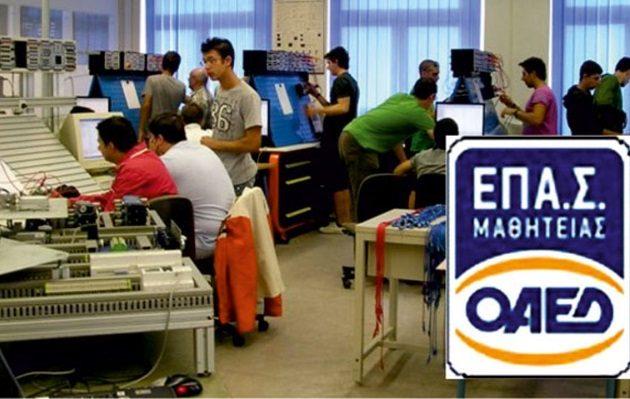 Οι δημοφιλείς σχολές του ΟΑΕΔ για επαγγελματική κατάρτιση – Οι προθεσμίες για αιτήσεις