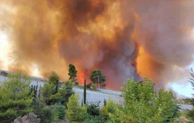 Καίγεται η Αχαΐα: Εκκενώνονται οικισμοί – Απομακρύνθηκαν παιδιά από κατασκήνωση
