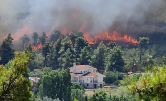 Σταμάτα: Οι φλόγες «γλείφουν» τη Γαλήνη – Άνεμοι έως και 6 μποφόρ