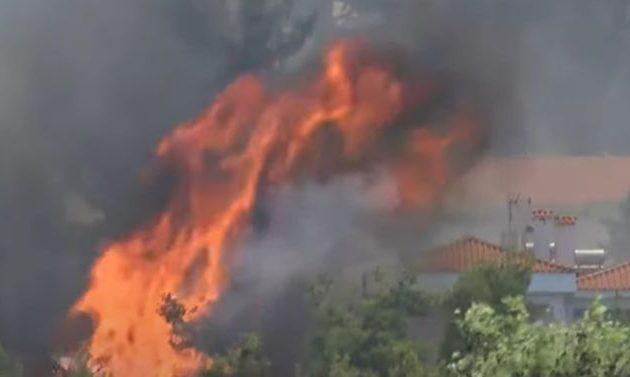Δήμαρχος: Η φωτιά στη Σταμάτα πέρασε μέσα από τα σπίτια