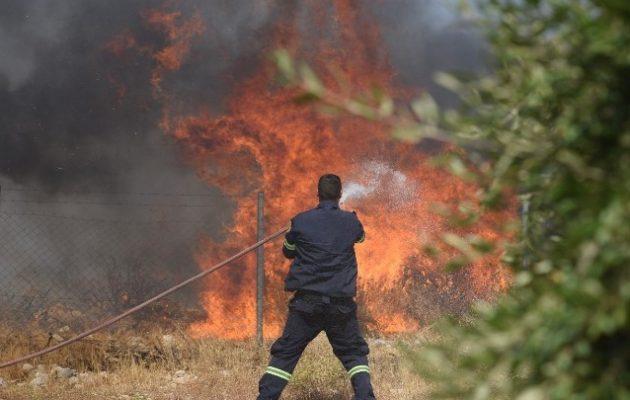 Πάτρα: Τουλάχιστον 5 σπίτια κάηκαν στην Ελεκίστρα – Σε εξέλιξη η φωτιά στη Δροσιά