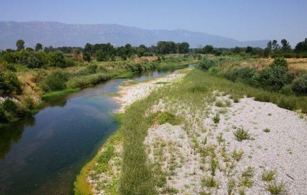 Σε ρυάκι έχει μετατραπεί ο Πηνειός ποταμός λόγω υψηλών θερμοκρασιών