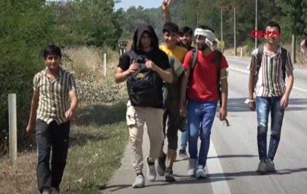 Αφγανοί συρρέουν στον Έβρο ύστερα από ψευδείς ειδήσεις ότι άνοιξαν τα σύνορα (βίντεο)