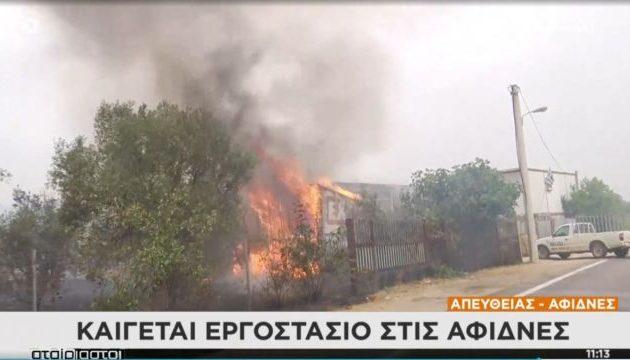 Καίγεται εργοστάσιο προπανίου στις Αφίδνες