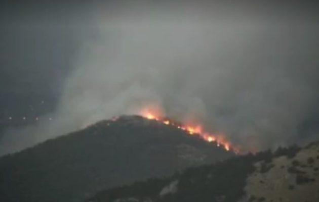 Πρόεδρος Κοινότητας Αφιδνών: Στείλτε πυροσβεστικά, καιγόμαστε