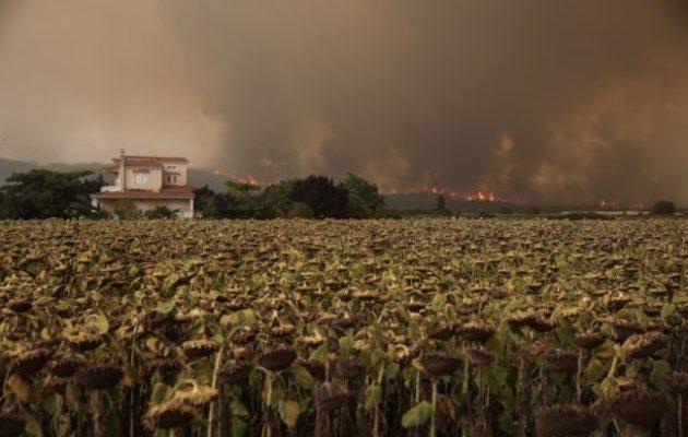 Αντιδήμαρχος Μαντουδίου: Τα χωριά μας ζουν σκηνές μικρασιατικής καταστροφής