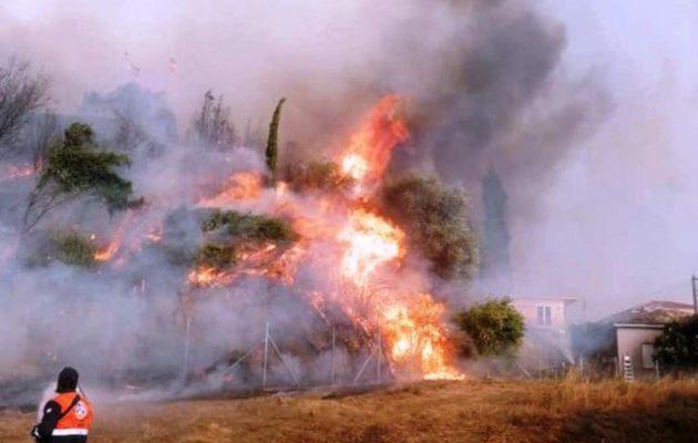 Φωτιά Ηλεία: Χρυσοχοΐδης και Μενδώνη μεταβαίνουν στην Αρχαία Ολυμπία