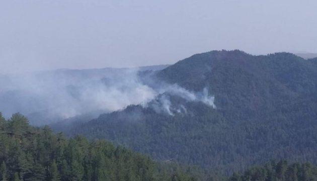 Αναζωπυρώθηκαν οι φωτιές στην Κοζάνη